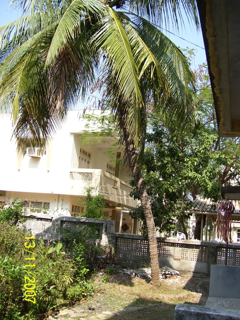 Our Coconut Tree Valsad
